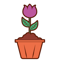 Potted flower interior decoration garden spring vector