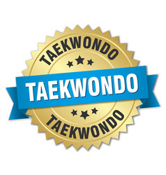 Taekwondo round isolated gold badge vector