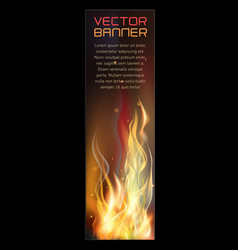 vertical fire flame banner vector image vector image