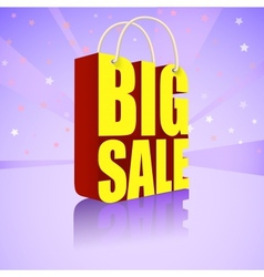 Big sale bright colorful banner for your business vector image