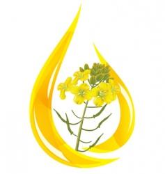 mustard oil vector image