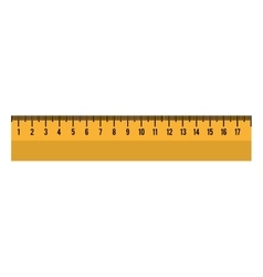 cartoon ruler tool school graphic vector image