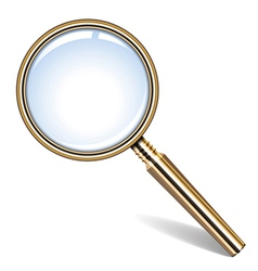 golden magnifying glass vector image vector image