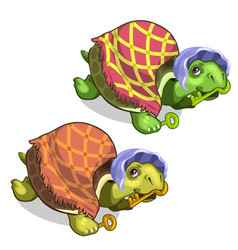 old tortoise in grandmothers suit holds golden key vector image vector image
