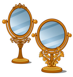 two mirrors with golden frame and petal ornament vector image vector image