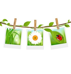 Summer photos with clothespins vector