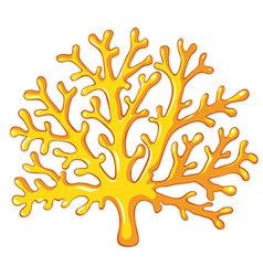 Yellow coral on white vector