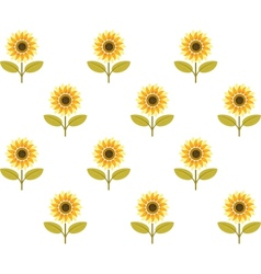Cute sunflower seamless pattern vector