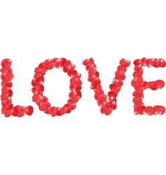 Petals love vector