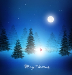Christmas Night Background vector image