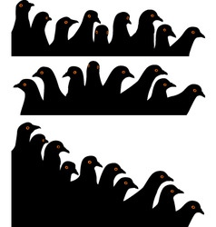 pigeon heads vector image vector image