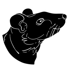 Rat avatar vector