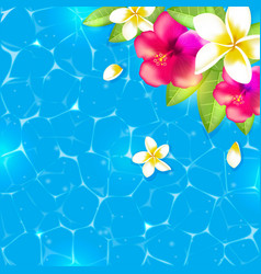 Flowers and leaves in the water vector