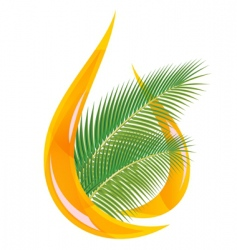 palm oil vector image vector image
