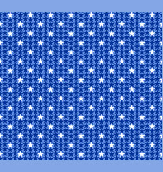 pattern from national flag vector image vector image