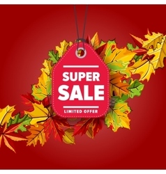 Super sale label limited offer vector