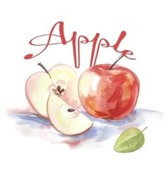 Watercolor apple fruit label with the inscription vector