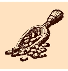 cocoa hand drawn plate sketch vector image vector image