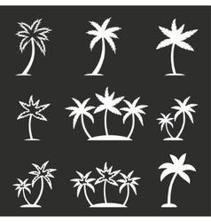 Palm tree icon set vector image