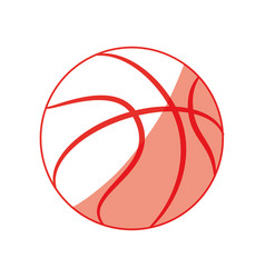 Isolated basket ball vector