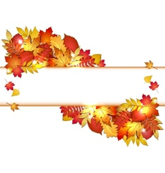 Autumn banner with leaves vector
