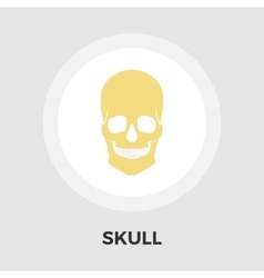Anotomy skull flat icon vector