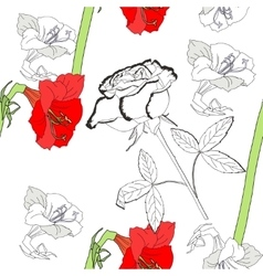 Seamless pattern with amaryllis and white rose vector image