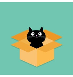 Cat inside opened cardboard package box flat vector