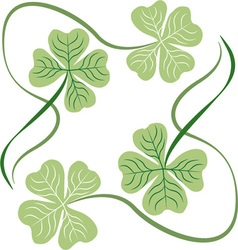 Irish shamrocks vector