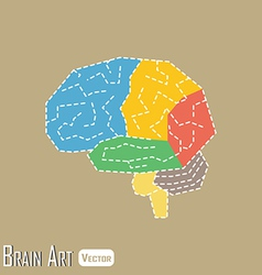 Brain anatomy vector