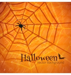 Felt pen drawing of spider web vector image