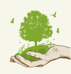 Green tree in the hand vector