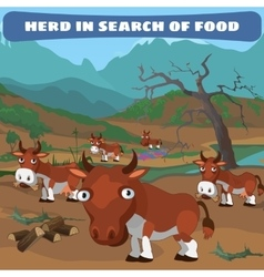 Herd of cows in search of food natural landscape vector