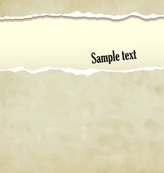 Tear paper vector