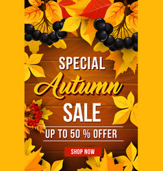 Autumn sale discount poster vector