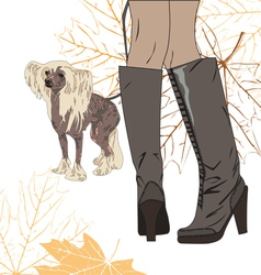 for a walk with the dog vector image