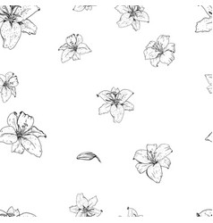 Lily flowers hand drawn in contour seamless vector