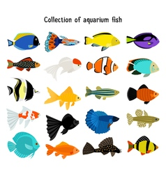 Aquarium fish set underwater diving fishes vector
