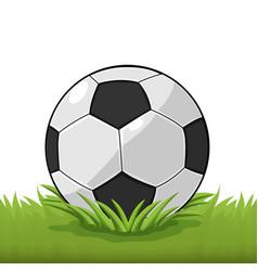 Soccer ball field grass cartoon vector