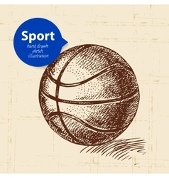 Hand drawn sport object Sketch basketball vector image