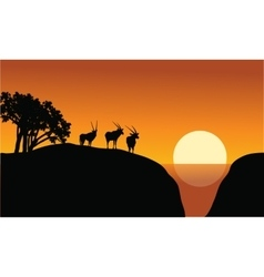Antelope silhouette on the cliff vector