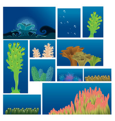 underwater plants and corals vector image