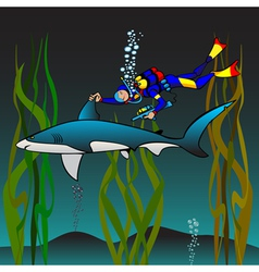 vaccination of a shark vector image vector image