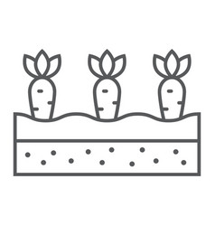 Growing carrots thin line icon farming vector