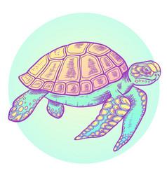 Hand drawn sea turtle vector