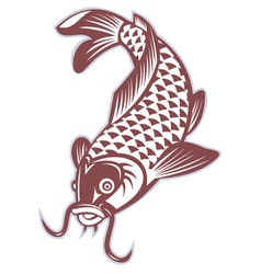 koi carp swimming down vector image vector image