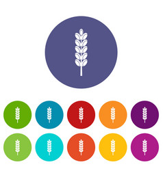 wheat spike icons set flat vector image