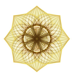 Gold beautiful decorative ornate mandala vector