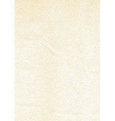 paper texture vertical size vector image