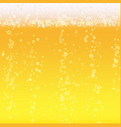 beer foam background light bright bubble and vector image